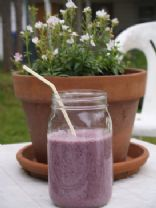 Blueberry Macadamia Milk Smoothie
