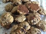 OMG HEALTHY OATMEAL HIGH PROTEIN PLUM COOKIES!!