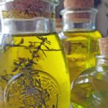Dehydrated Foods ~ Infused Herb Oils & Spices
