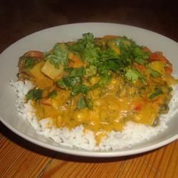Crock Pot Vegetable Korma