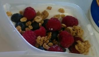 Greek & Fruit Yogurt