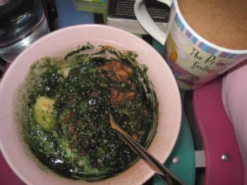 Oh Spirulina If You Are So Good For Me Why Do You Taste So Bad