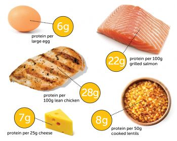 Top foods highest in protein for Does fish have protein