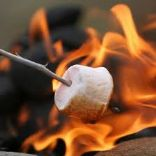 Smores