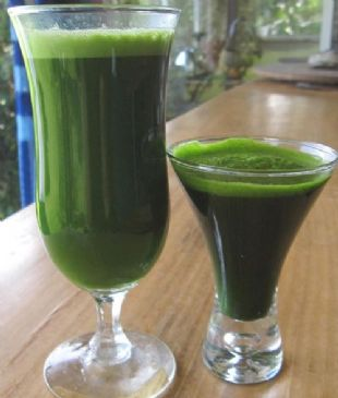 Kale Slow Juicer Recipe : Kale Cucumber Juice Recipes SparkRecipes