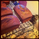 Pumpkin Bread Gluten Free