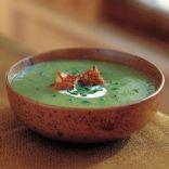 Williams-Sonoma Broccoli Leek Soup