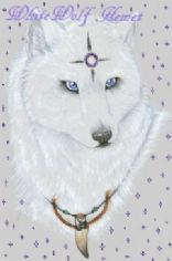 Wolf's Tidbits
