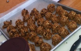 Granolas Snack Balls