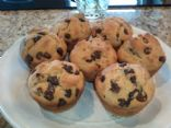 Vegan Simple Melty Chocolate Chip Muffins