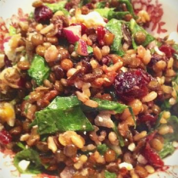 Lentil & Rice Salad w/ Spinach, Feta & Dried Cranberries