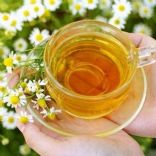 Chamomile Tea