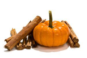 Travelnista's Pumpkin Spice Mix