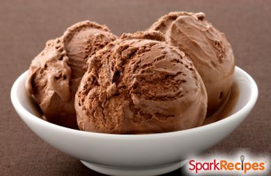 Chocolate Peanut Butter Frozen Yogurt Recipe | SparkRecipes