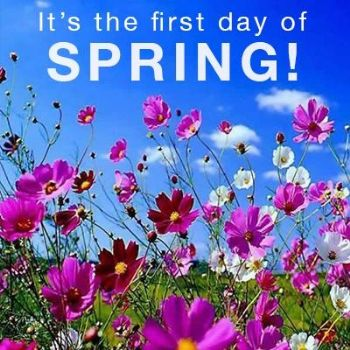 Image result for happy first day of spring images