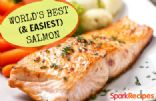 World's Best (and Easiest) Salmon