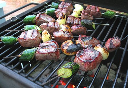 Grilled Antelope Tenderloin Kebabs