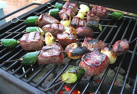 Grilled Antelope Tenderloin Kebabs