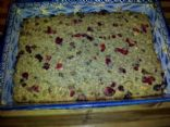 Cranberry Orange Oatmeal bars