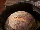 Knead Not Sourdough Recipe