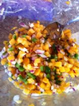 Beth's Persimmon Salsa