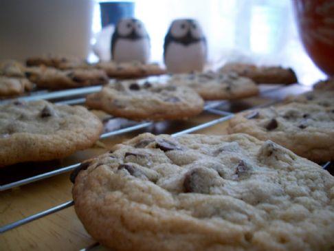Adam's Chocolate Chip Cookies of the Gods