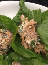 Tuna Salad with Eggs  (by RHONDA2277)