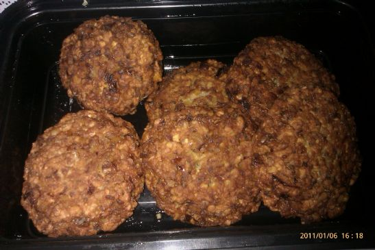 Oatmeal Patties