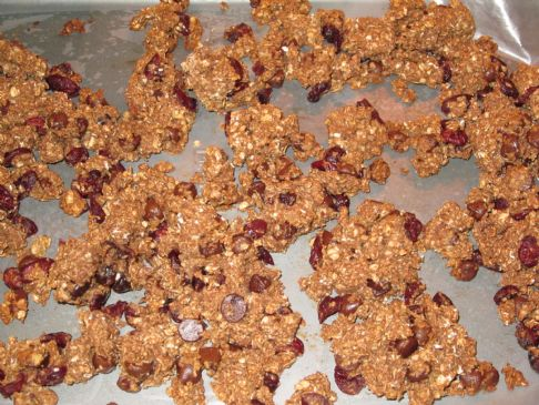 Cranberry Chocolate Chip Granola